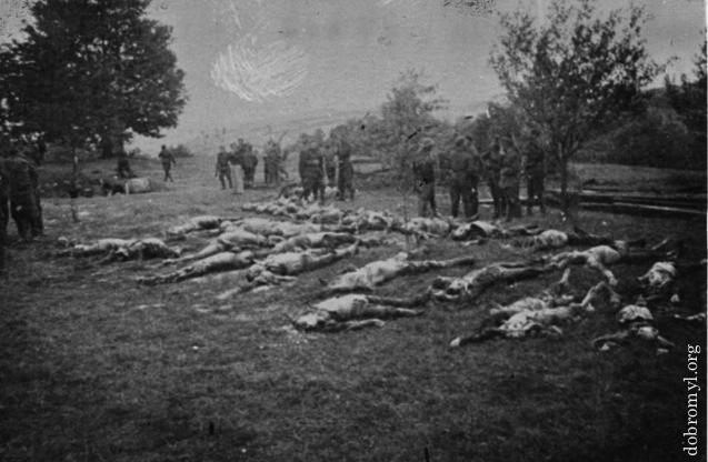 Урочище Саліна. Липень 1941 року. Словацькі військові оглядають тіла вбитих.